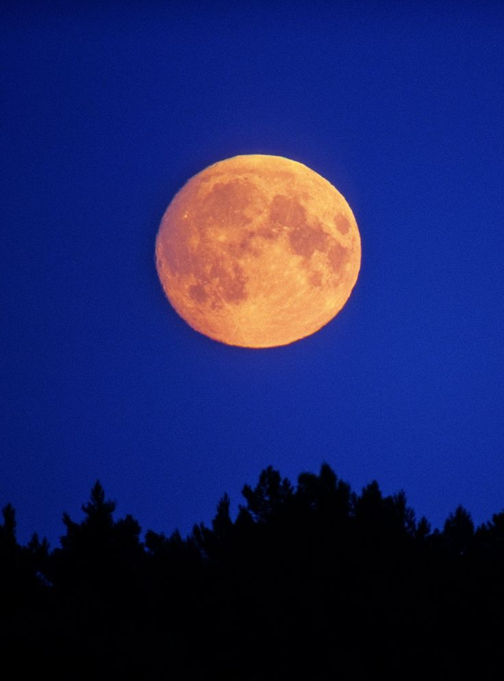 The Full Moon & Its Many Names, Explained+#refinery29