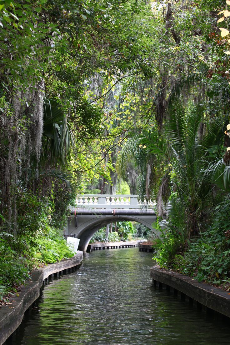 Winter Park's Scenic Boat Tour. so beautiful! i had a blast doing this!