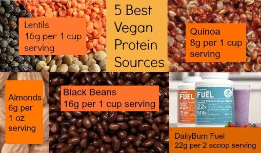 5 Best Vegan Protein Sources via @DailyBurn