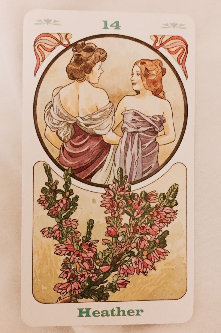 Cartas Florales de Bach -  El mensaje de cada flor de Bach
