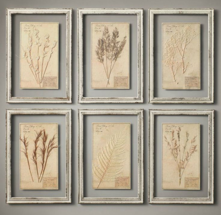 How to Make Restoration Hardware Wall Decor - easy project using frames,  coffee stained paper and flowers (or weeds) from the yard. Great tutorial!  Our Rhodes to Happiness