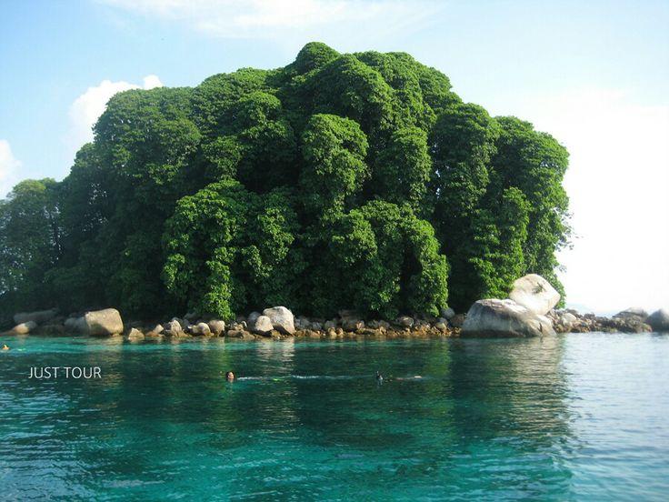#티오만 #섬 #산호숲