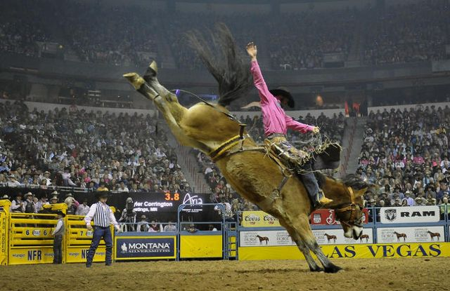 As the toughest cowboys and girls from across the country make their way to Sin City this week to compete in the National Finals Rodeo (NFR) here are five facts about the world's richest rodeo that you may not be aware of.