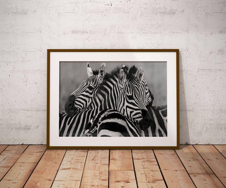 Zebra Decor-Zebra Poster-Digital Prints-Safari Animal Print-Baby Zebra Printable Zebra-Zebra Home Decor-Zebra Baby Shower-African Zebra by NaturePrintsButique on Etsy