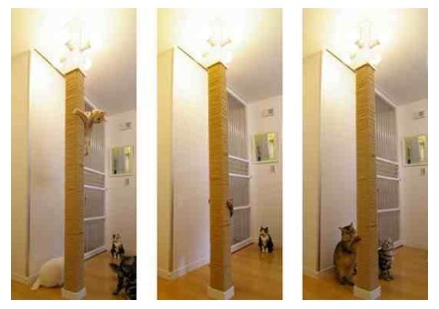 Floor Ceiling Cat Sisal Scratching Pole Diy