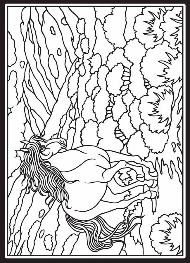 34 best Horse coloring pages images on Pinterest  Coloring books