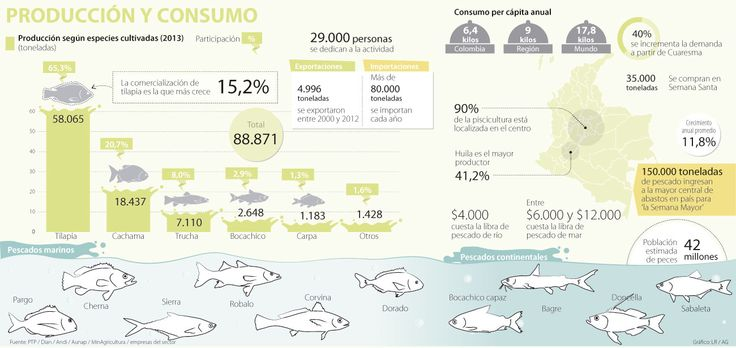 Consumo de pescado llegará a 35.000 toneladas durante Semana Santa