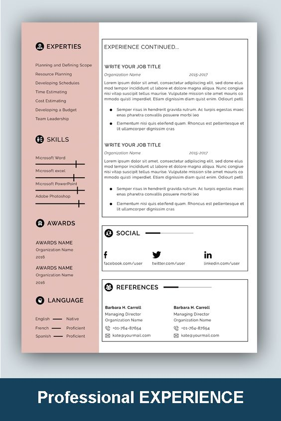 resume template professional microsoft word