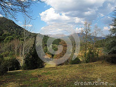 Hogsback landscape with trees and Amatola mountains in early spring, Eastern Cape of South Africa