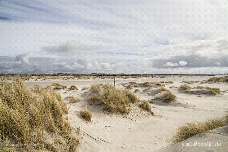 Amrum – Auch Insel der Freiheit genannt