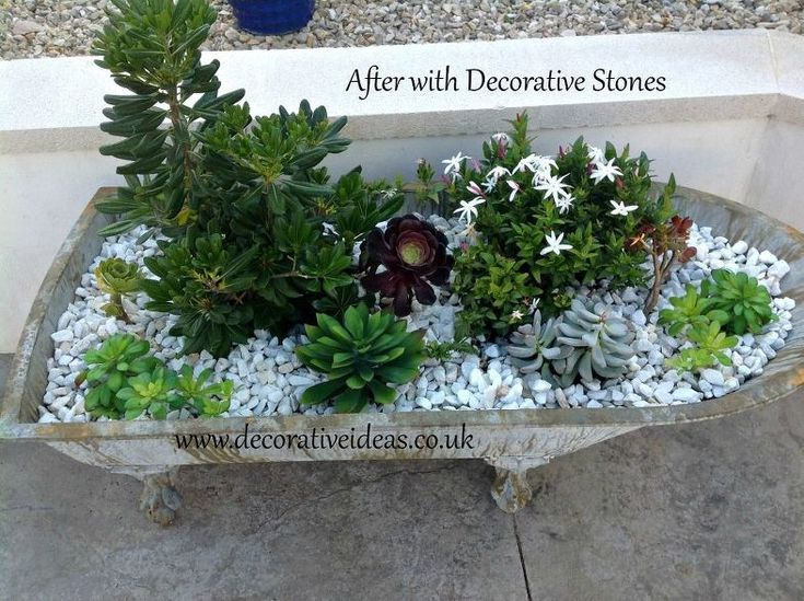 Upcycle That Old Bath Into A Container Garden! – Garden Designs