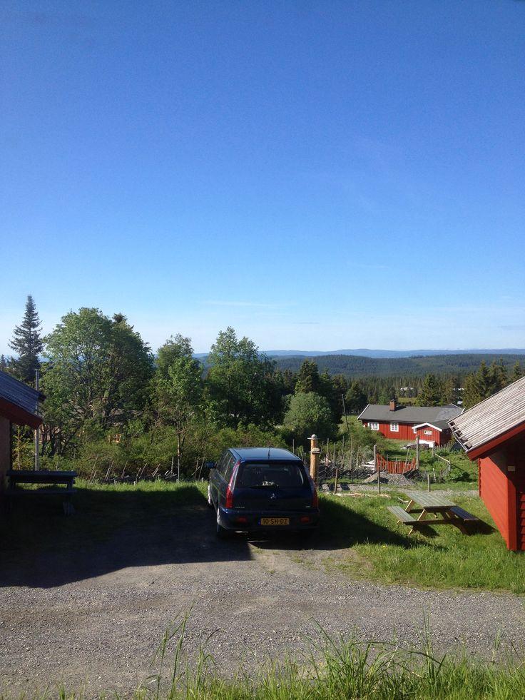 Di 10-6-2014 / Nordseter / 8.30 uur