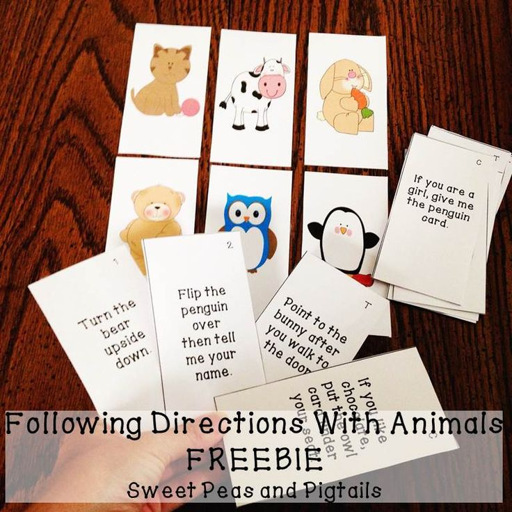on Following Directions Following Directions     Worksheets  Activities  Goals  and More    Free  Language Stuff