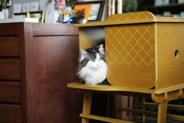 A Pretty Sweet Pad For Your Cat. Modern Cat BedsPet ...