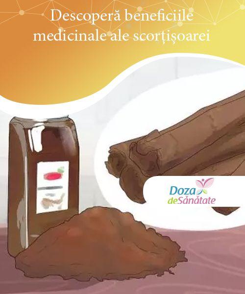 Descoperă beneficiile medicinale ale scorțișoarei   Beneficiile medicinale ale scorțișoarei sunt nenumărate. Citește acest articol pentru a afla care sunt ele și cum le poți valorifica!