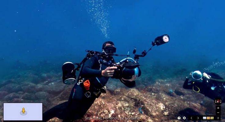 Google underwater Street View  , - ,   Google Street Vi...