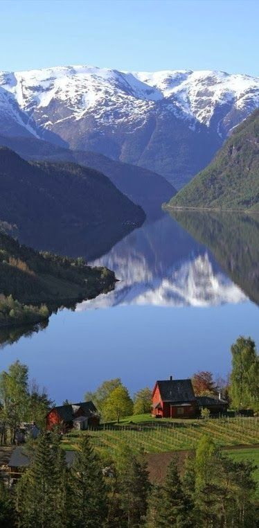 Stunning Ulvik, Norway.  I can't imagine that my ancestors left such beauty behind