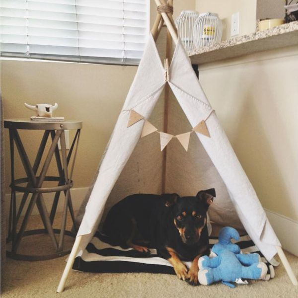 Give your pooch a place he can call his very own. Teepees are easy to make, inexpensive and far more interesting than a typical crate or dog bed.