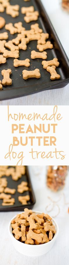Tasty, healthy dog treats...now that the kids are grown I bake for the dogs