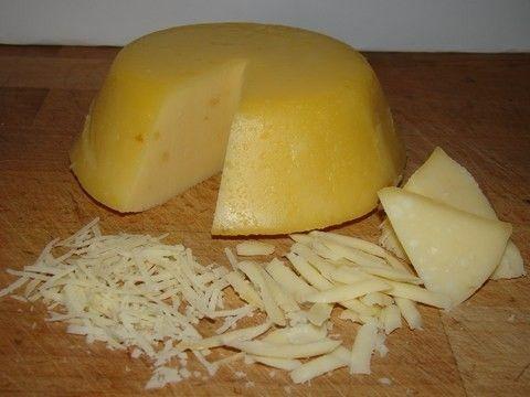 Házi trappista sajt