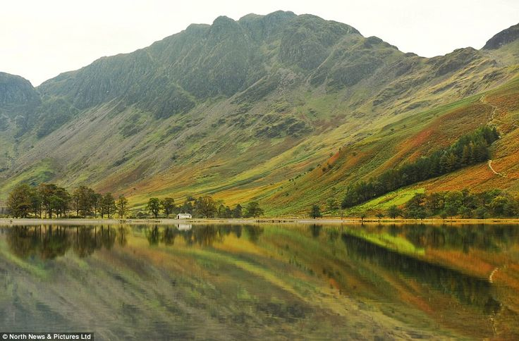 Natural beauty: The glassy waters of Buttermere reflect the glorious autumn hues of green and brown bracken in the Lake District today