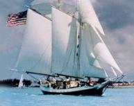 Set sail on the Liberty sail-ship explore the world !