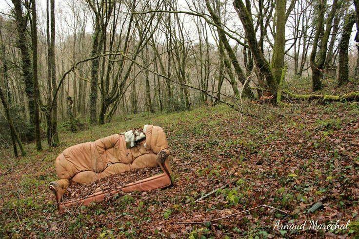 Viens chez moi, j'habite dehors.  #creuse #limousin #nouvelleaquitaine #canape #bois #wood #countryside #campagne #arbre #tree