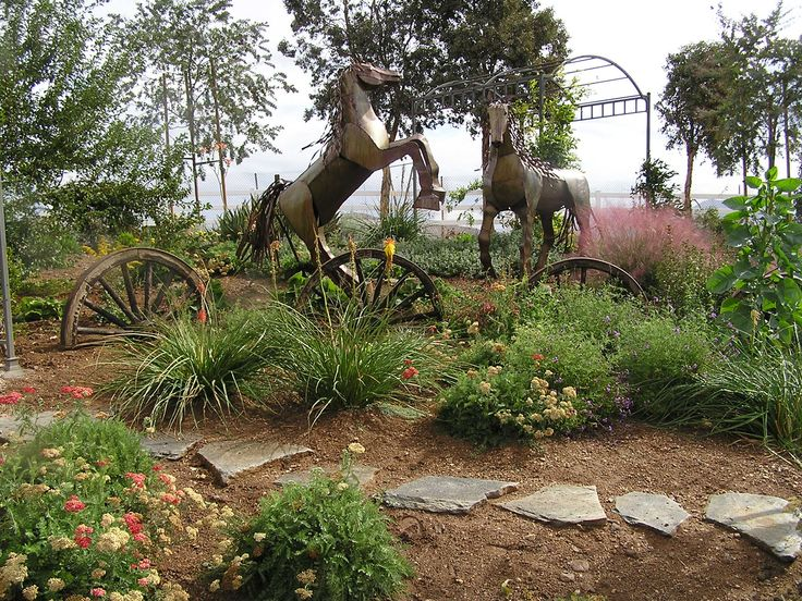 Drought tolerant landscape drought tolerant landscaping for Gardening and landscaping