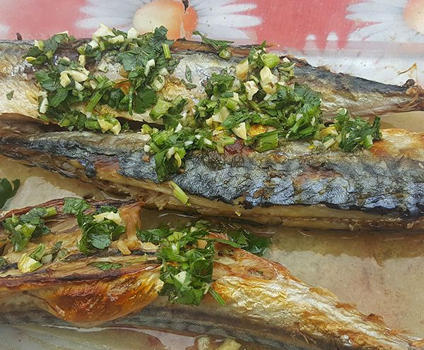 Kuva i piše: Ana Anufrijev     Skuša je iz familije plavih riba. ...