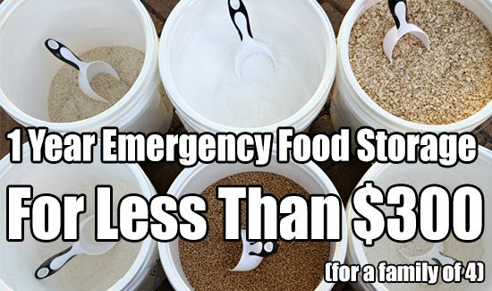 1 Year Emergency Food Storage For Less Than $300.