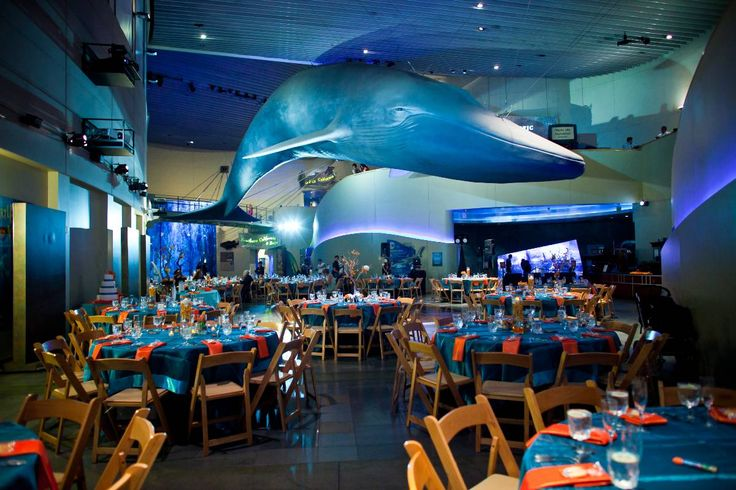Aquarium Of The Pacific Wedding Wedding Venues