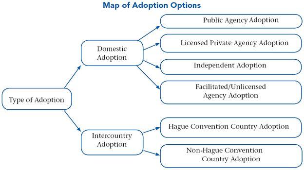 Starting your Adoption-Where do you begin?