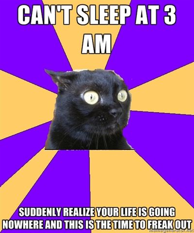 ANXIETY CAT | ---Most of my panic attacks happen in the middle of the night when I am alone and feeling guilty for all of my mistakes I've made and since no one is awake or online at 3am I usually pin to keep myself calm. That's why this board was created (or renamed and updated) at 5 o'clock this morning. <3 ~@glamour_scars