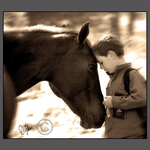 "<3 trust……LITTLE BOY TELLING HIS PET HORSE, ""I LOVE YOU LOTS, HI-HO-SILVER""…….ccp"