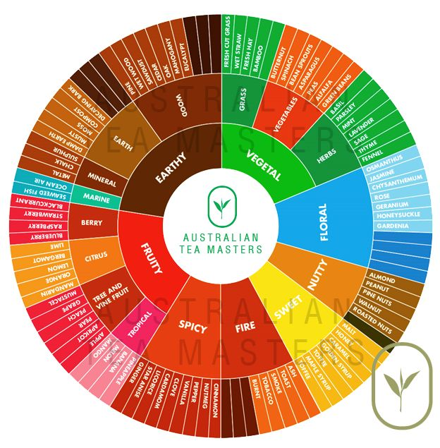 1000 images about tastespace 2 0 on pinterest festivals for Food wheel template