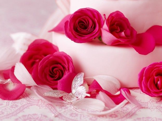 Beautiful Pink Rose Hd Wallpapers Free Download Pink Rose
