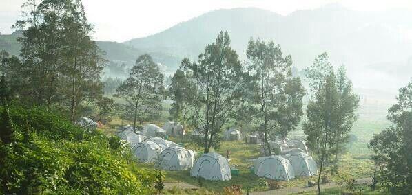 Dieng festival camp!