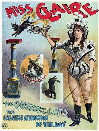 Miss Claire -   'The Queen of the Cats'.   1889.  http://www.vintagevenus.com.au/vintage/reprints/info/C268.htm