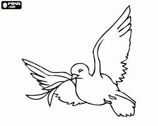 Vredesduif, een witte duif is een traditioneel christelijke en joodse symbool voor de liefde en vrede kleurplaat