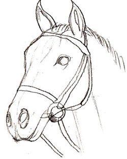 Cabeza de caballo (paso a paso)                                                                                                                                                                                 Más                                                                                                                                                                                 Más