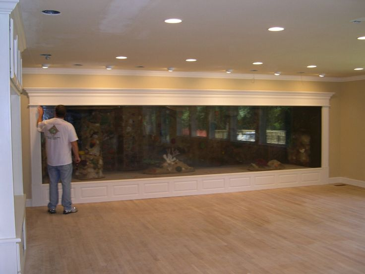 Oh my land! Could you imagine having a tank like this in your house? It would be beautiful!!