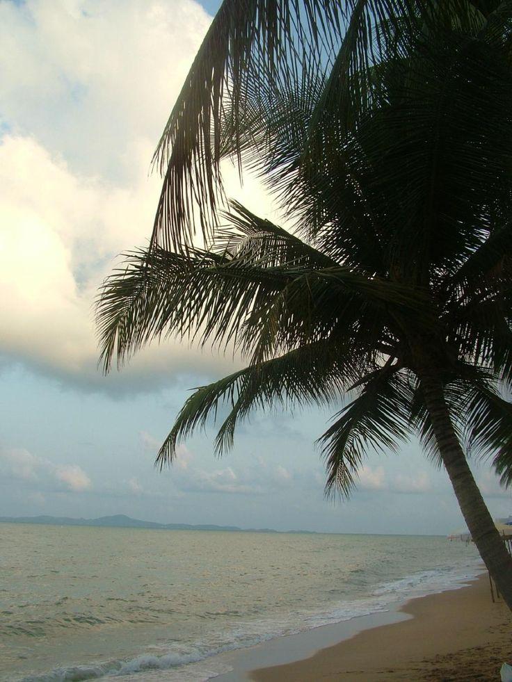 Jomtien Beach Reviews - Pattaya, Chonburi Province Attractions - TripAdvisor
