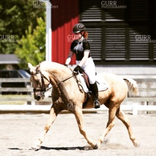 Lookin hot in the extended trot