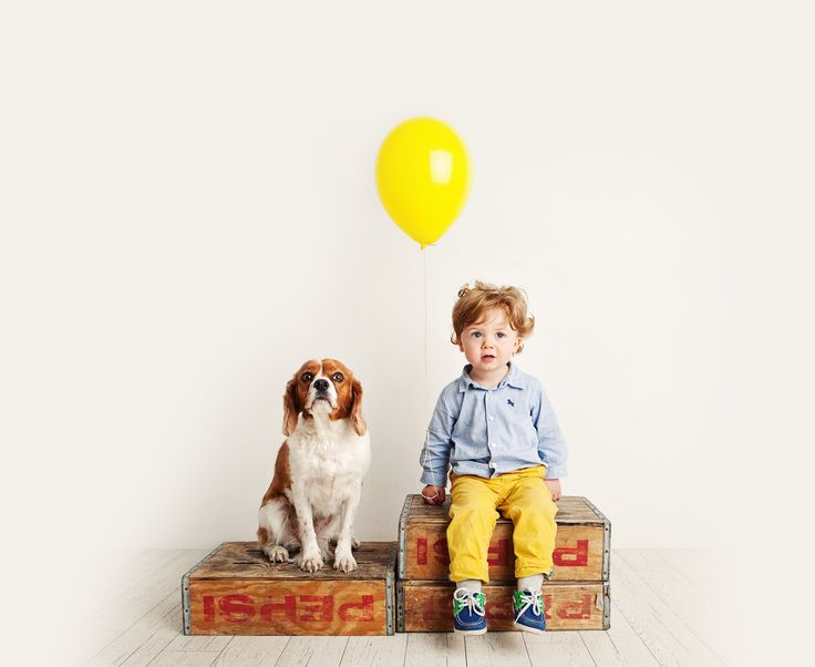 Boggio Studios - Pets - Boy and his dog - King Charles Spaniel