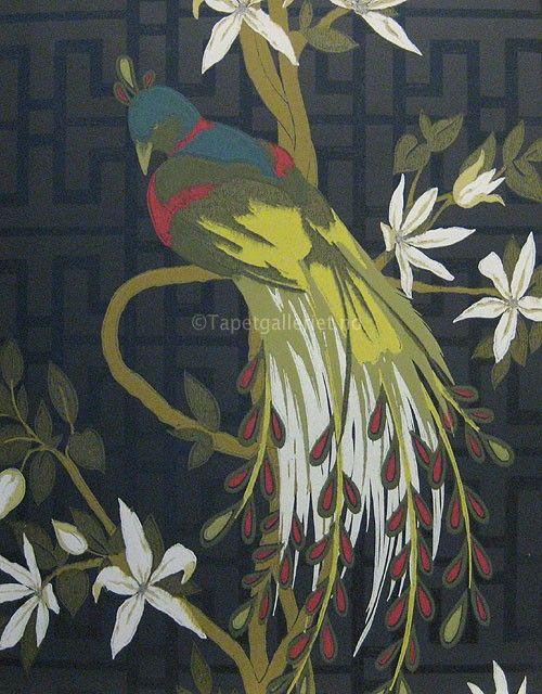 Tapetgalleriet | Tapet og tapeter - Nina Campbell kolleksjon Paradiso