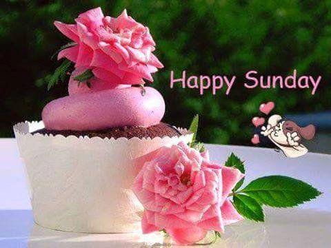 (102) Rajesh Kumar - G00d m0rning 0ll my fb friends have a joyful Sunday! https://www.facebook.com/profile.php?id=100010145671431