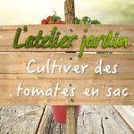 Un simple sac de terreau suffit pour faire pousser vos plants de tomates ! L'Atelier Jardin vous le démontre en vidéo.