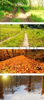 Négy évszak kollázs tavaszi nyár ősz tél vad utakon photo