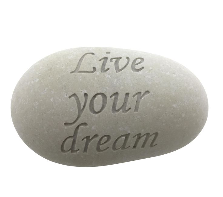 Steen - Live your dream. www.Millows.nl