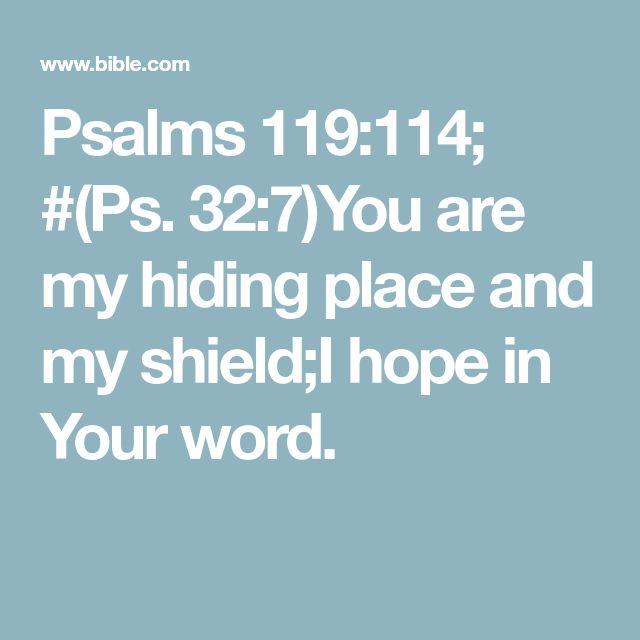 Psalms 119:114; #(Ps. 32:7)You are my hiding place and my shield;I hope in Your word.
